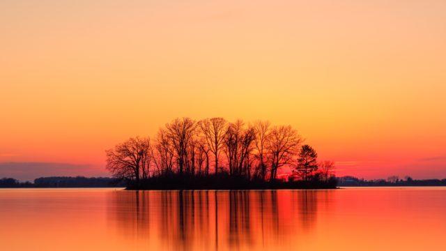 夕焼け 木 湖